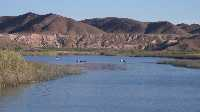 Lower Colorado River Yuma AZ